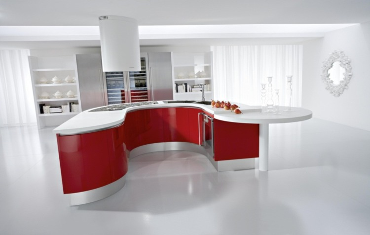 Red Kitchen Design